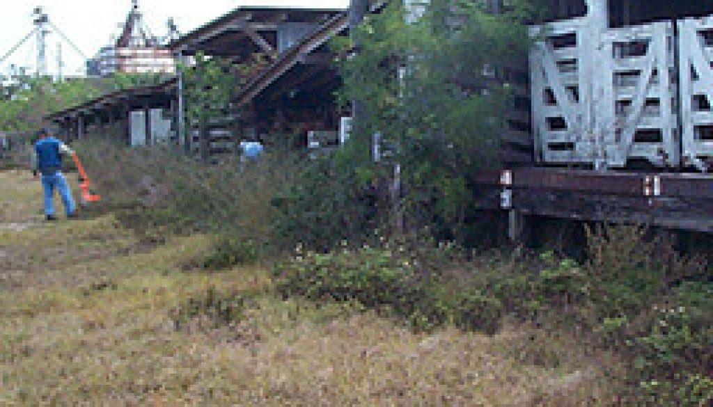 0108749-0108358-pp-kissimee-livestock-grid
