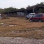 Site Remediation: Former Kissimmee Livestock Market